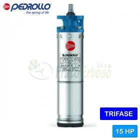 """6PD/15 - Motor rewindable 6"""" 15 HP-three phase"""