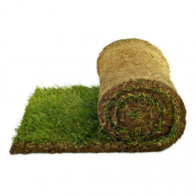 20 square meters of lawn that is ready in rolls